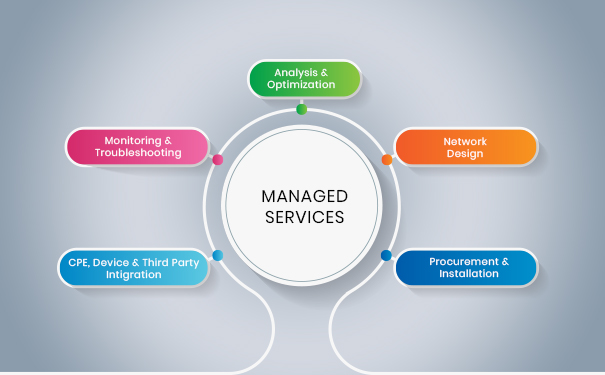 Managed Service Company Definition -